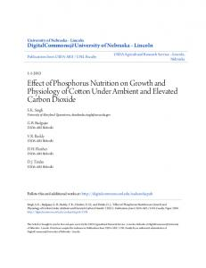 Effect of Phosphorus Nutrition on Growth and Physiology of Cotton Under Ambient and Elevated Carbon Dioxide