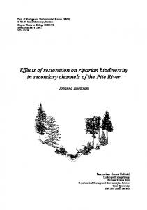 Effects of restoration on riparian biodiversity in secondary channels of the Pite River