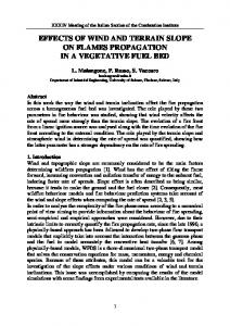 EFFECTS OF WIND AND TERRAIN SLOPE ON FLAMES PROPAGATION IN A VEGETATIVE FUEL BED