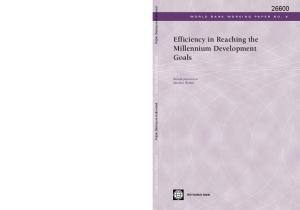 Efficiency in Reaching the Millennium Development Goals