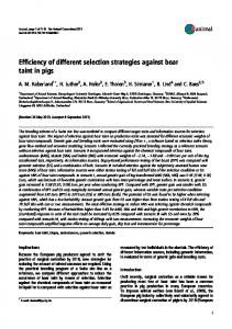 Efficiency of different selection strategies against boar taint in pigs