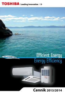 Efficient Energy Energy Efficiency