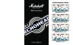EH-1 Echohead SPACE WALK (Amp: Clean)
