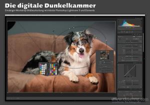 Einsteiger-Workshop Bildbearbeitung mit Adobe Photoshop Lightroom 5 und Elements