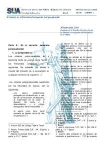 El Aborto en el Derecho Comparado Jurisprudencial