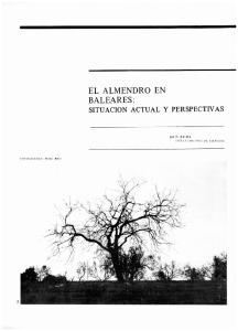 EL ALMENDRO EN BALEARES : SITUACION ACTUAL Y PERSPECTNAS