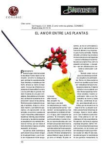 EL AMOR ENTRE LAS PLANTAS