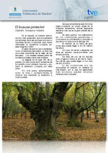 El bosque protector Castaño: bosque y madera