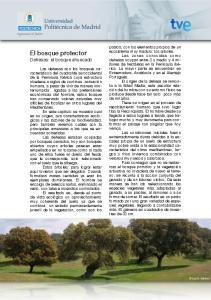 El bosque protector Dehesas: el bosque ahuecado