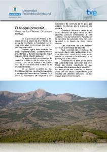 El bosque protector Sierra de los Filabres. El bosque frontera