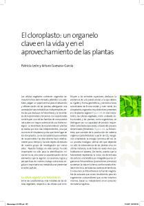 El cloroplasto: un organelo clave en la vida y en el aprovechamiento de las plantas