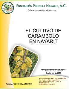 EL CULTIVO DE CARAMBOLO EN NAYARIT