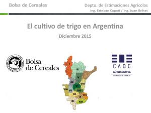 El cultivo de trigo en Argentina