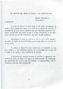 EL CULTIVO DEL ARROZ EN CHILE Y SUS EXPECTATIVAS