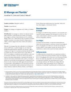 El Mango en Florida 1
