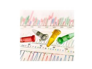 El proyecto del genoma humano (PGH)