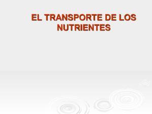 EL TRANSPORTE DE LOS NUTRIENTES