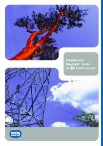 Electric and Magnetic fields in the Environment