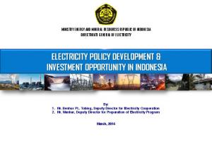 ELECTRICITY POLICY DEVELOPMENT & INVESTMENT OPPORTUNITY IN INDONESIA
