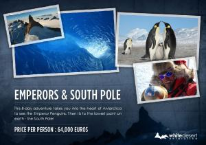 Emperors & south pole
