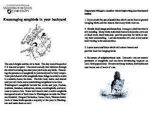 Encouraging songbirds in your backyard