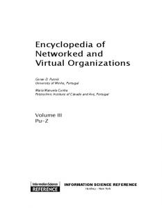Encyclopedia of Networked and Virtual Organizations