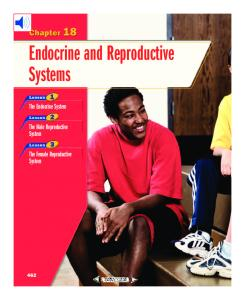 Endocrine and Reproductive Systems