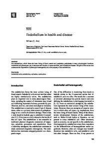 Endothelium in health and disease