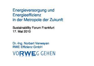 Energieversorgung und Energieeffizienz in der Metropole der Zukunft