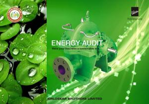ENERGY AUDIT. Make your business a sustainable one