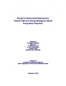 Energy for Sustainable Development Toward a National Energy Strategy for Belize Energy Sector Diagnostic