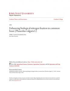 Enhancing biological nitrogen fixation in common bean (Phaseolus vulgaris L)
