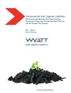 Environmental and Litigation Liabilities: