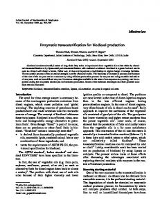 Enzymatic transesterification for biodiesel production