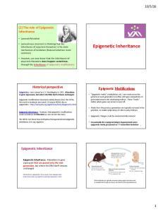 Epigenetic Inheritance