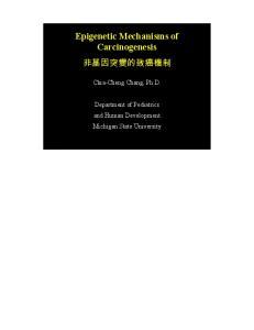 Epigenetic Mechanisms of Carcinogenesis