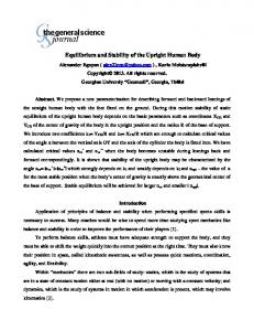 Equilibrium and Stability of the Upright Human Body