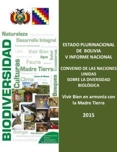ESTADO PLURINACIONAL DE BOLIVIA V INFORME NACIONAL