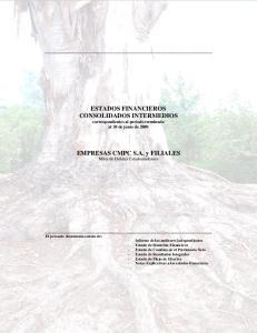 ESTADOS FINANCIEROS CONSOLIDADOS INTERMEDIOS correspondientes al periodo terminado al 30 de junio de 2009