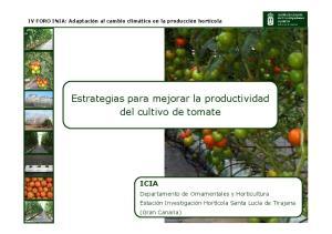 Estrategias para mejorar la productividad del cultivo de tomate