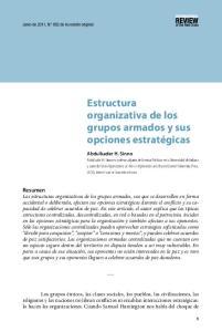 Estructura organizativa de los grupos armados y sus opciones estratégicas