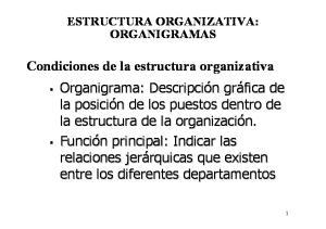 ESTRUCTURA ORGANIZATIVA: ORGANIGRAMAS