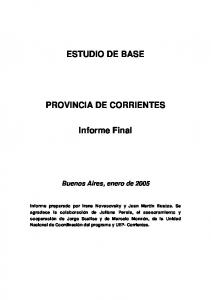 ESTUDIO DE BASE PROVINCIA DE CORRIENTES. Informe Final