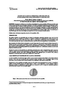 ESTUDIO DE LA ARCILLA EXPANDIDA COMO RELLENO DE INTERCAMBIADORES PARA ENFRIAMIENTO EVAPORATIVO 1