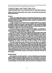 Estudio del comportamiento de cultivo de achicoria verde y pimiento del tipo lamuyo, bajo estructura con diferentes tipos de malla
