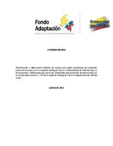ESTUDIOS PREVIOS MARZO DE 2013