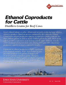 Ethanol Coproducts for Cattle Distillers Grains for Beef Cows