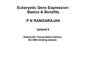 Eukaryotic Transcription factors: the DNA binding domain