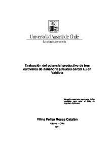 Evaluación del potencial productivo de tres cultivares de Zanahoria (Daucus carota L.) en Valdivia