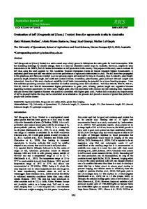 Evaluation of teff (Eragrostis tef [Zucc.] Trotter) lines for agronomic traits in Australia